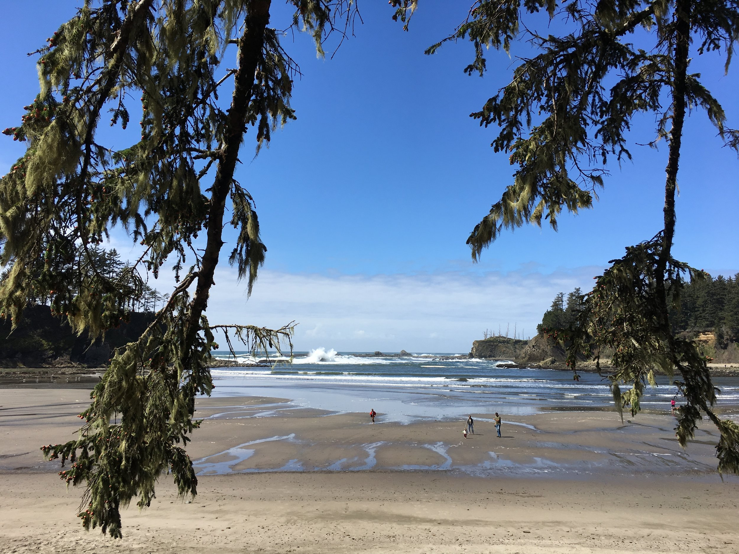 Glenda showed me around Cape Arago by Coos Bay, OR. Such a beautiful place!