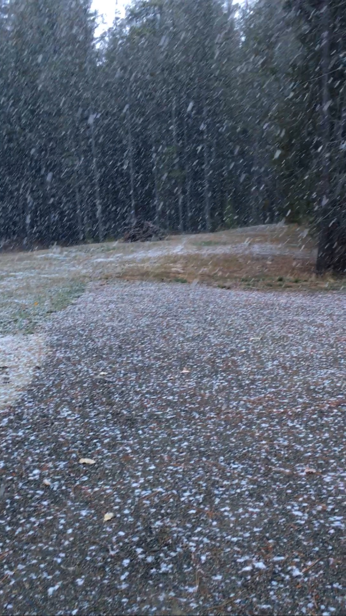 We had the first snow of the season on October 12th! It didn't last long, but it was beautiful! I can't wait for more!