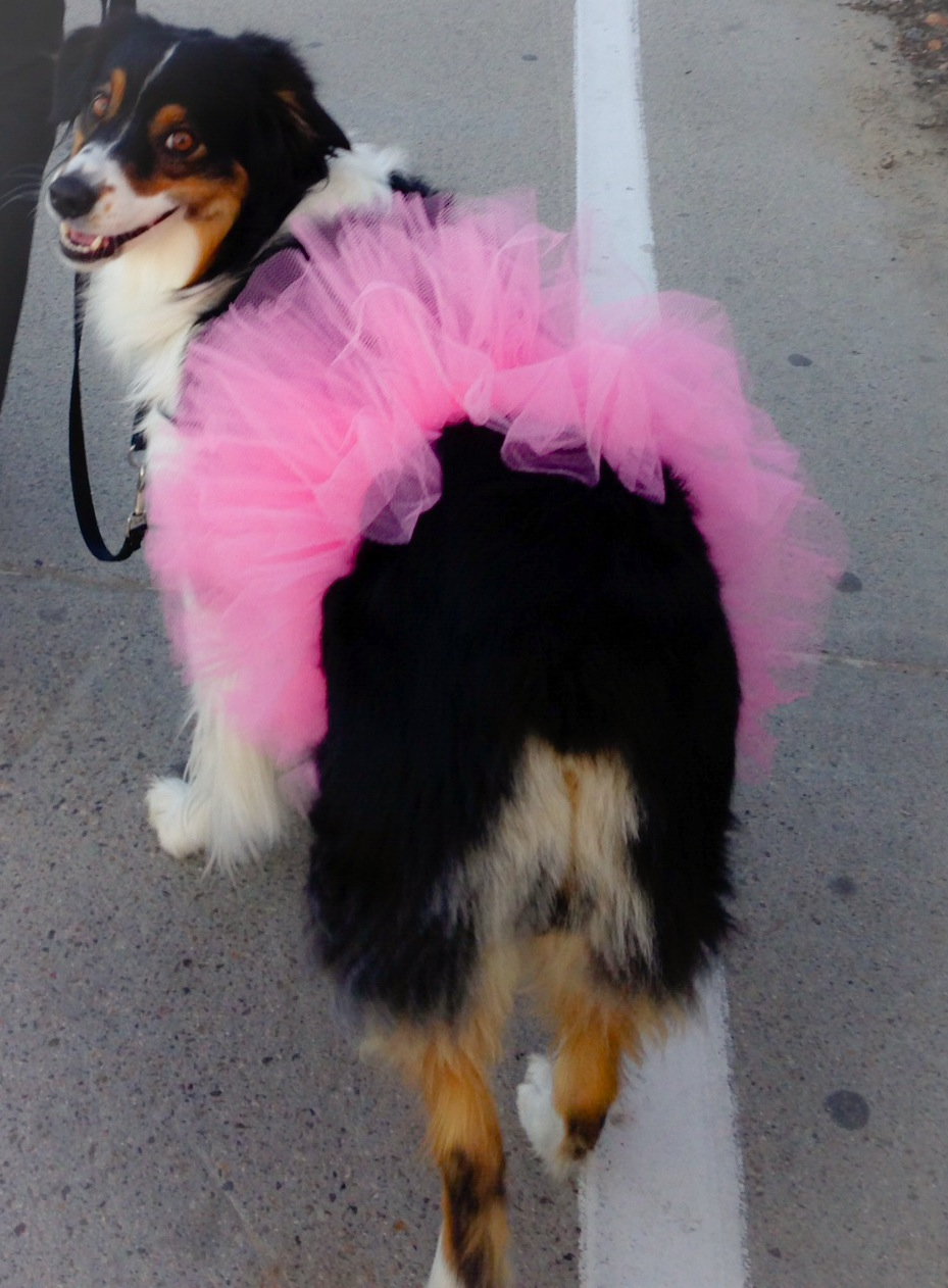 Does this tutu make my butt look big?