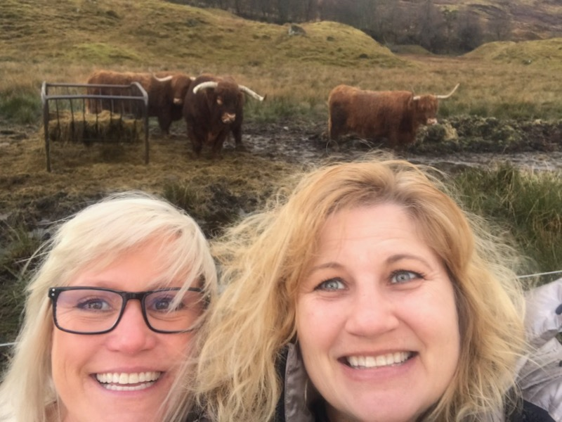 The one thing both Cherilyn and I said was a must see was highland cows. Finally on the way to the airport hotel we found some!
