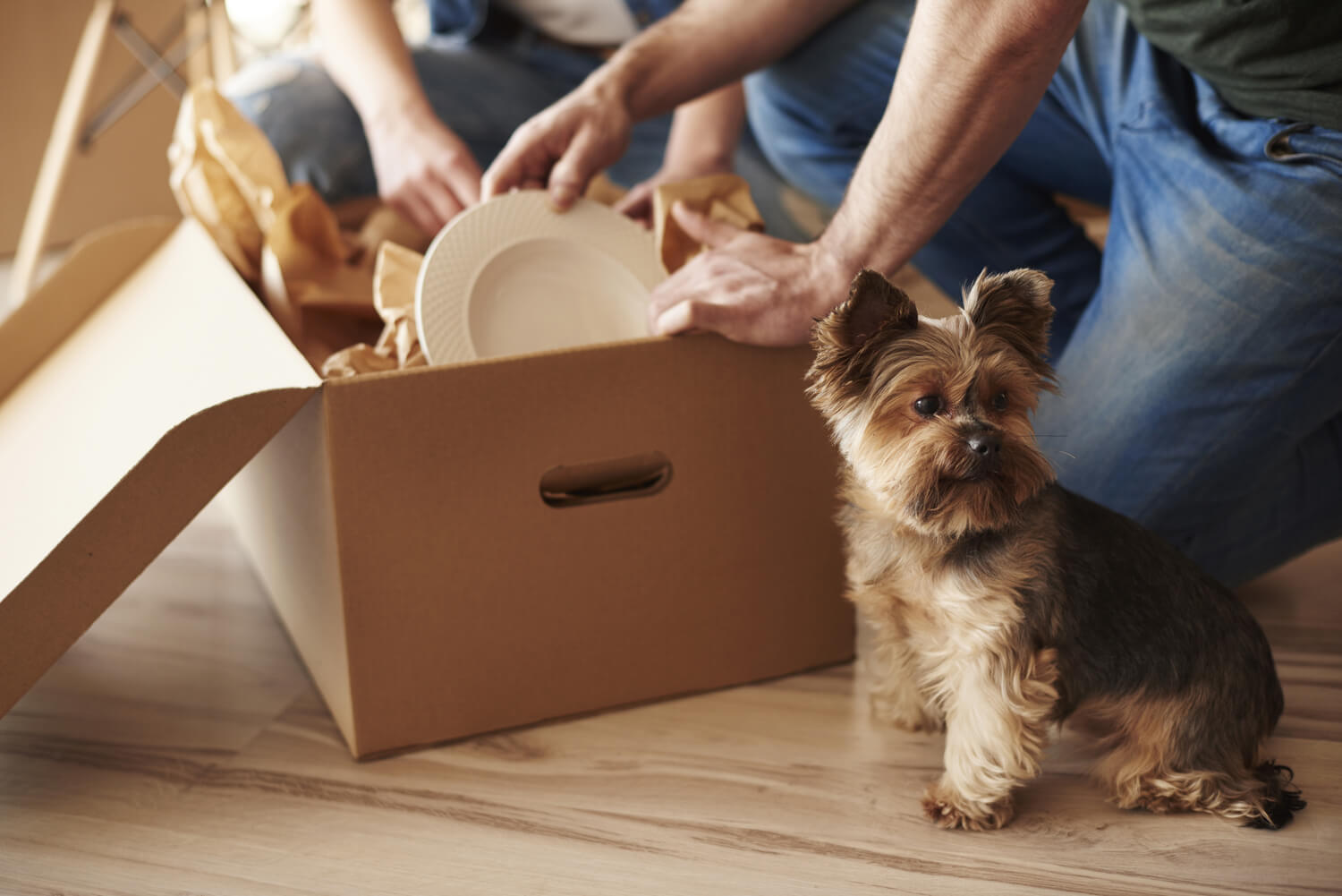 couple packing boxes - property management technology
