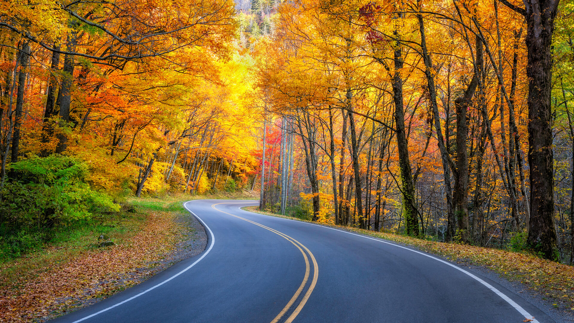 fall-road_when-is-the-best-time-to-move