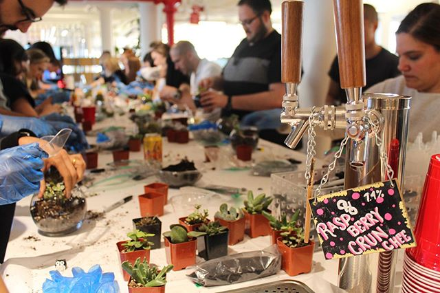 #TBT To Terrarium Night when we got to make our new desk buddies! 🍃🌿 #updater #nyc #tech #workperk #joblove #terrarium #succulents #succulentsofinstagram #terrariums #plants #plantsofinstagram