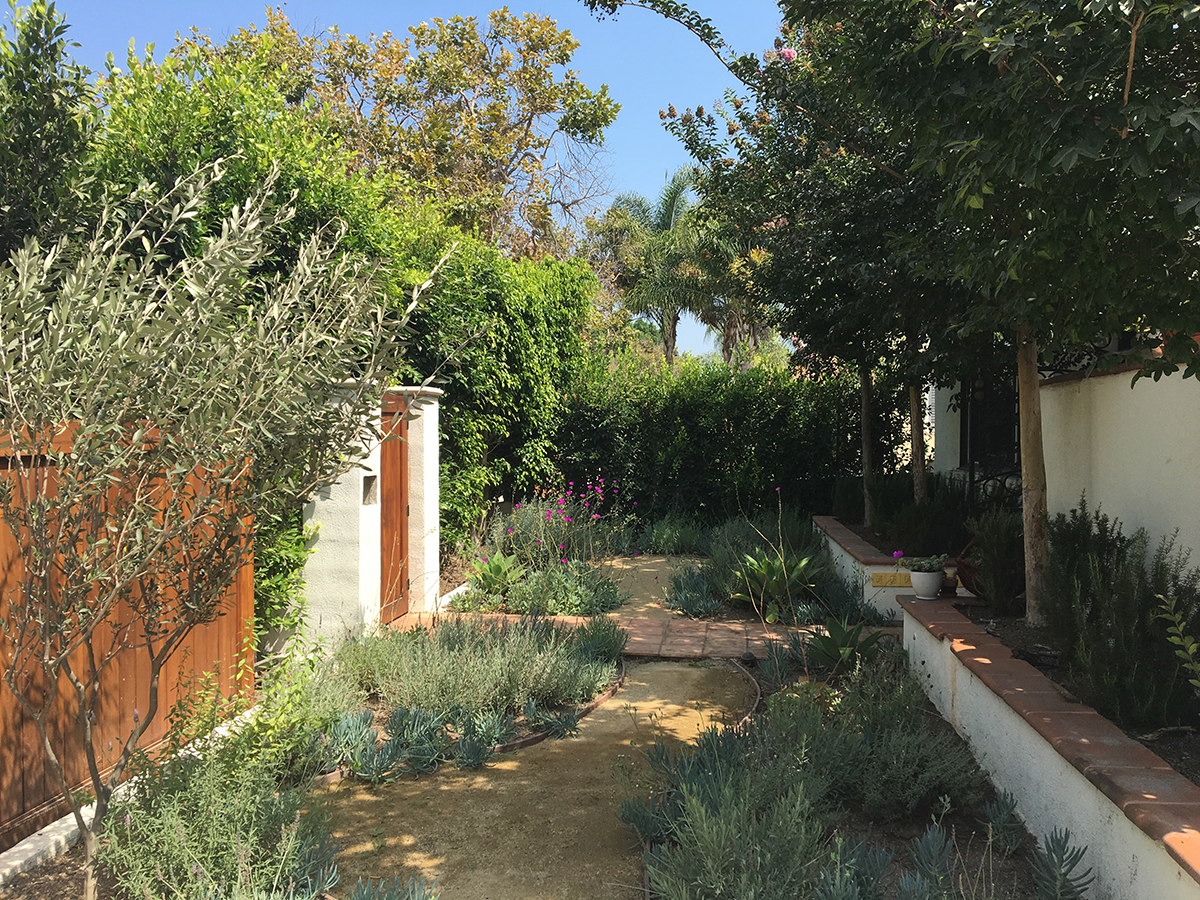 An entry driveway transformed into a Mediterranean garden.