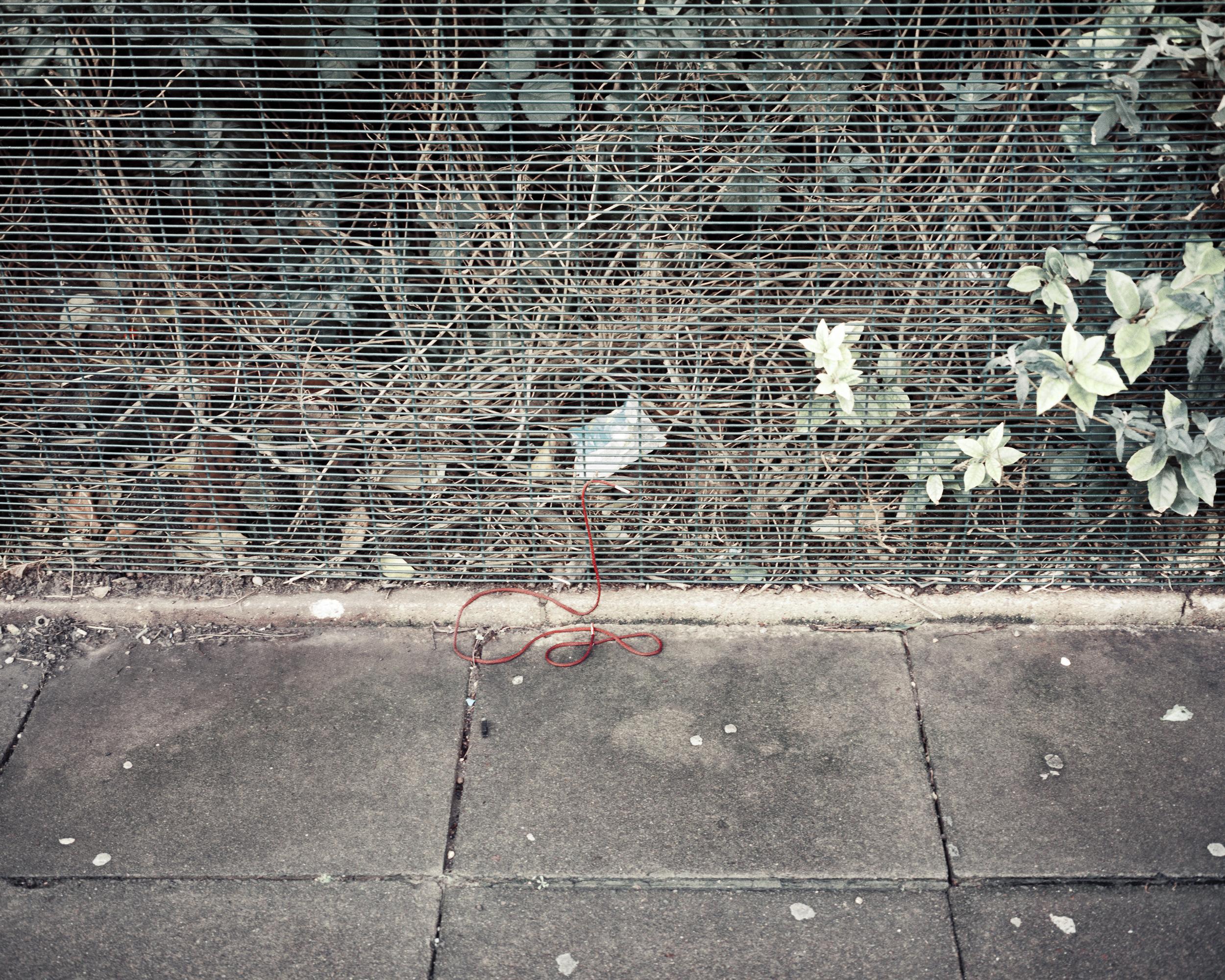 string(4).jpg