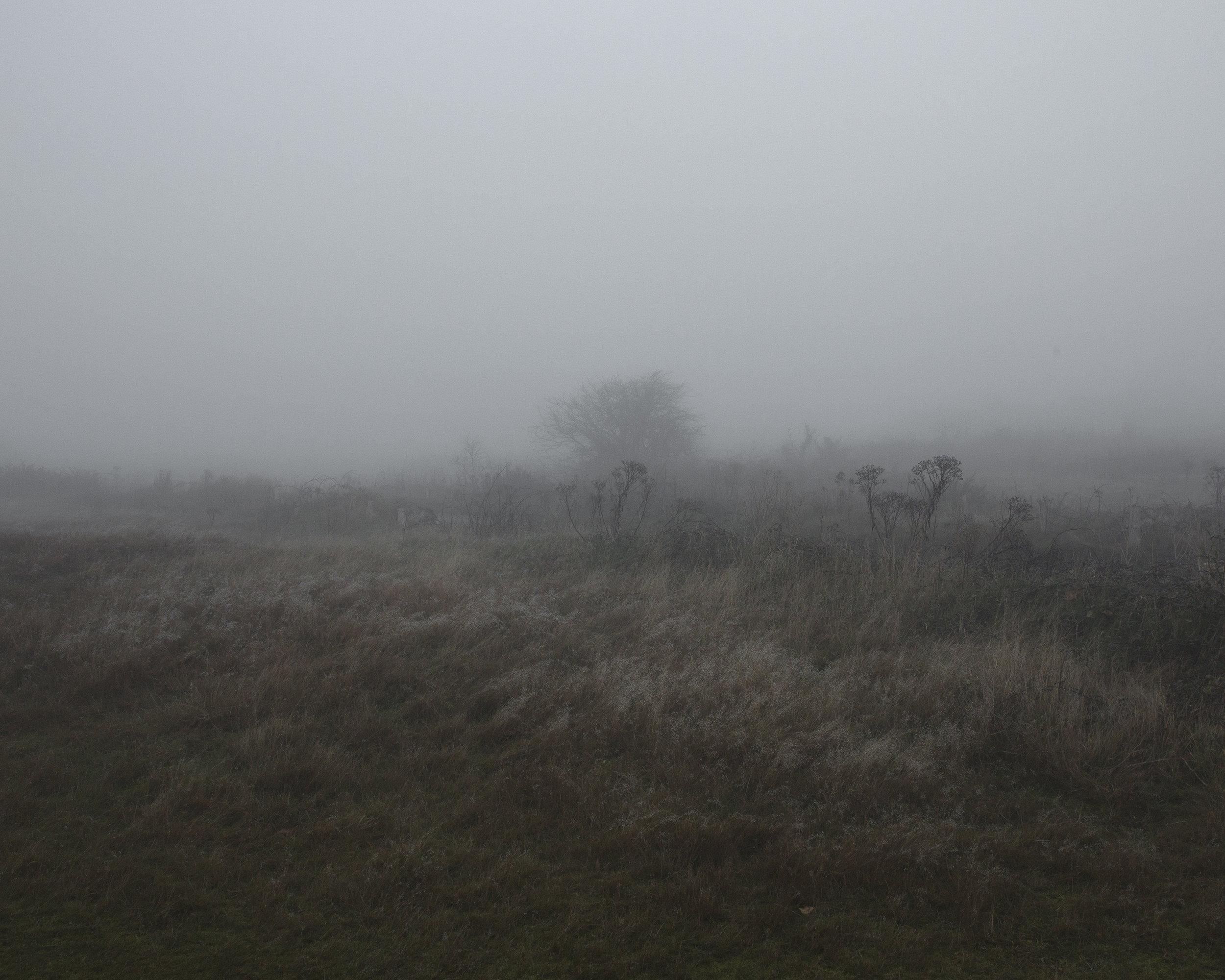 20161230_5th anniversary fog_0189.jpg