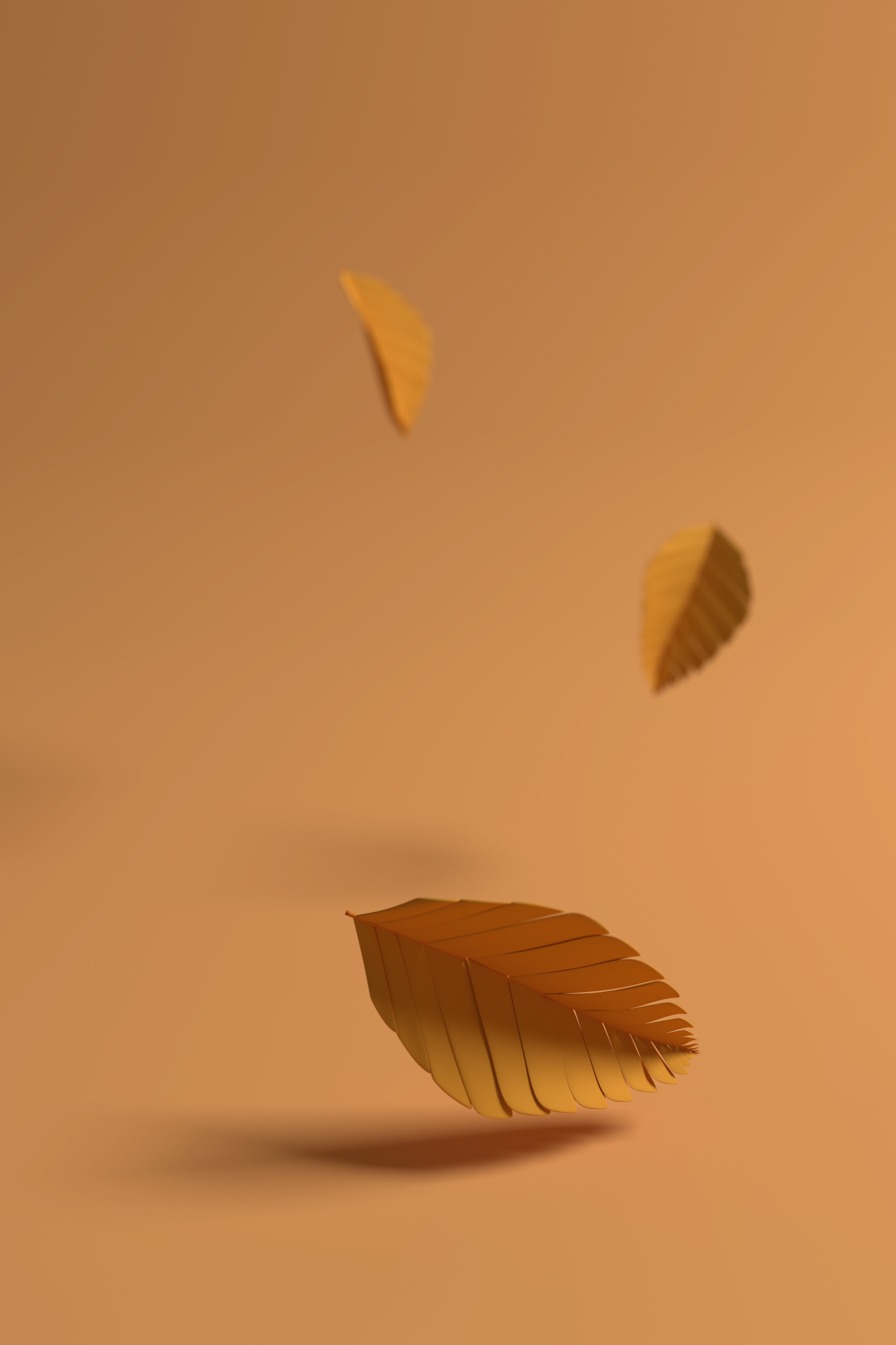 Falling leaves website.jpg