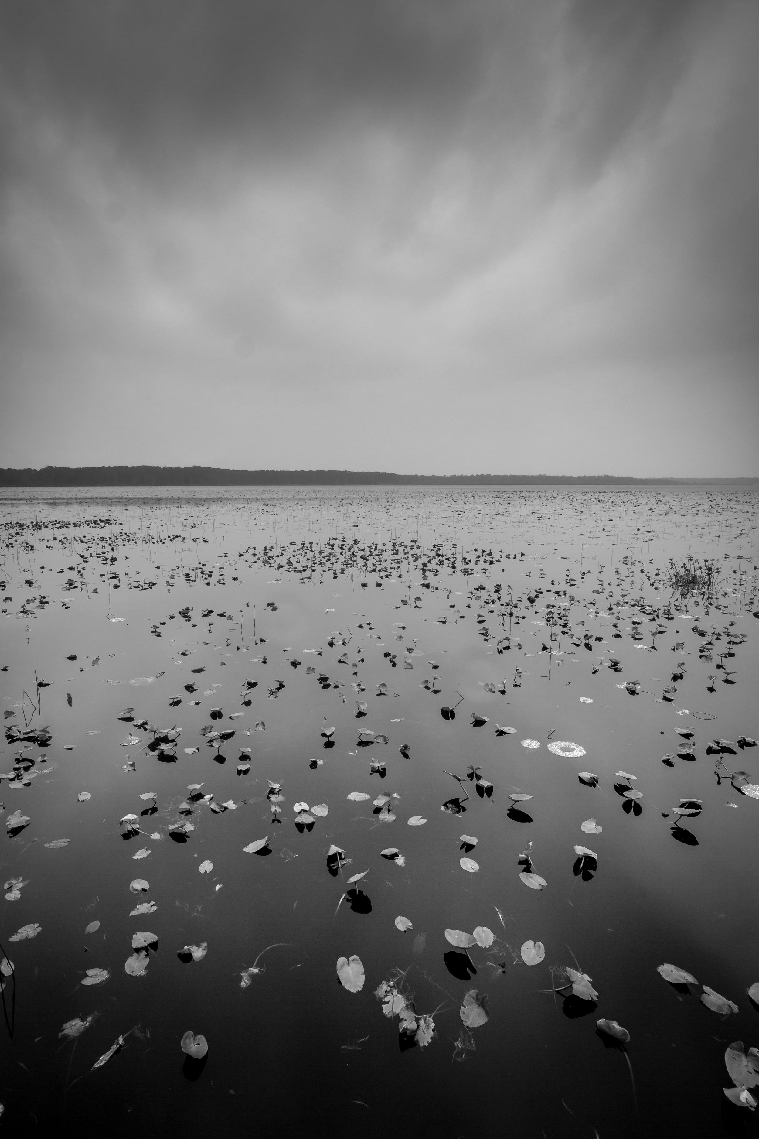 Lake Ashby-1