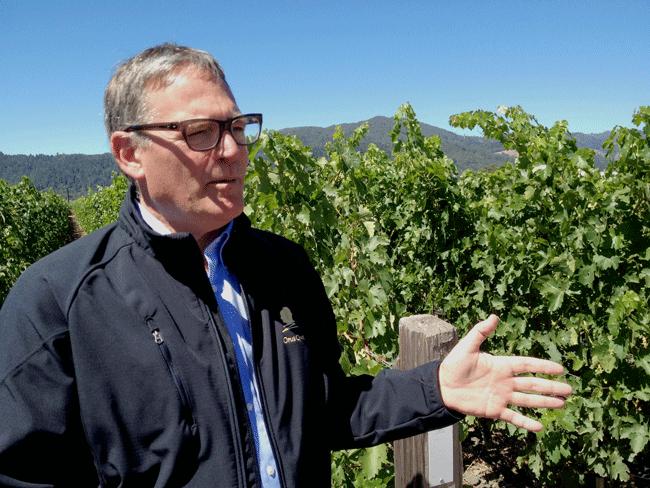 Opus One winemaker