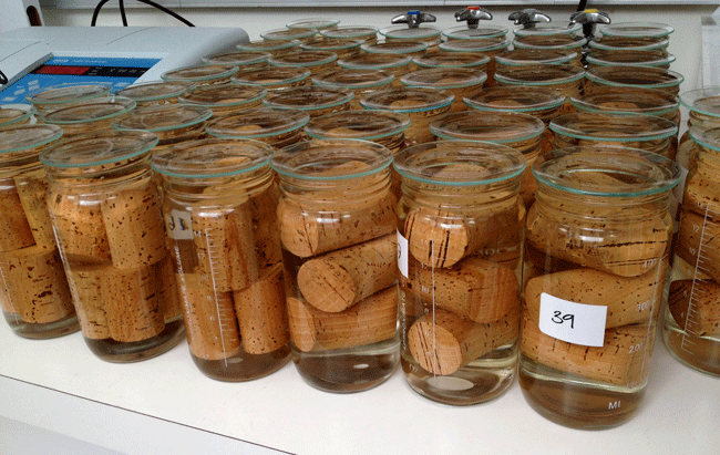 hand soaked corks to prevent corked bottles