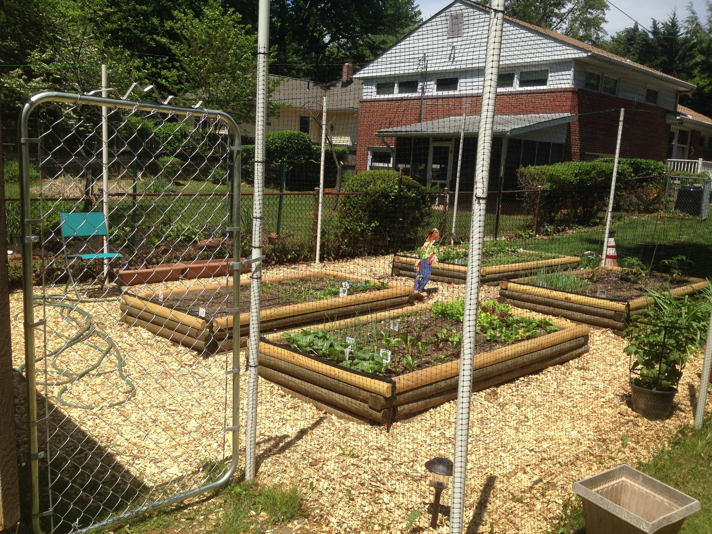 Garden Design Plan Urban Gardening Agriculture Fence Home
