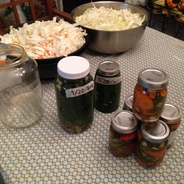 Fermentation and preservation workshop