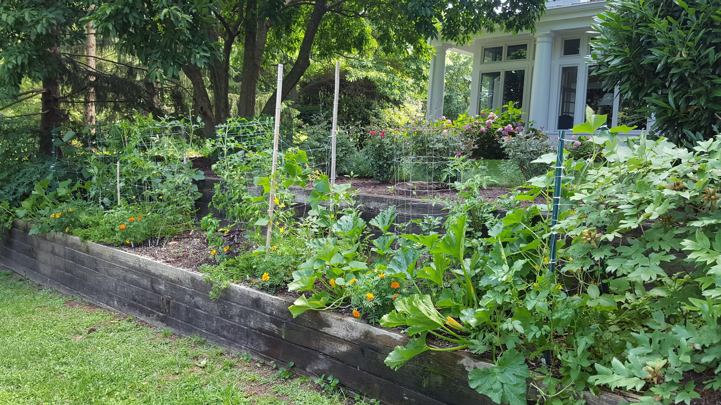 Tiered Veggie Garden