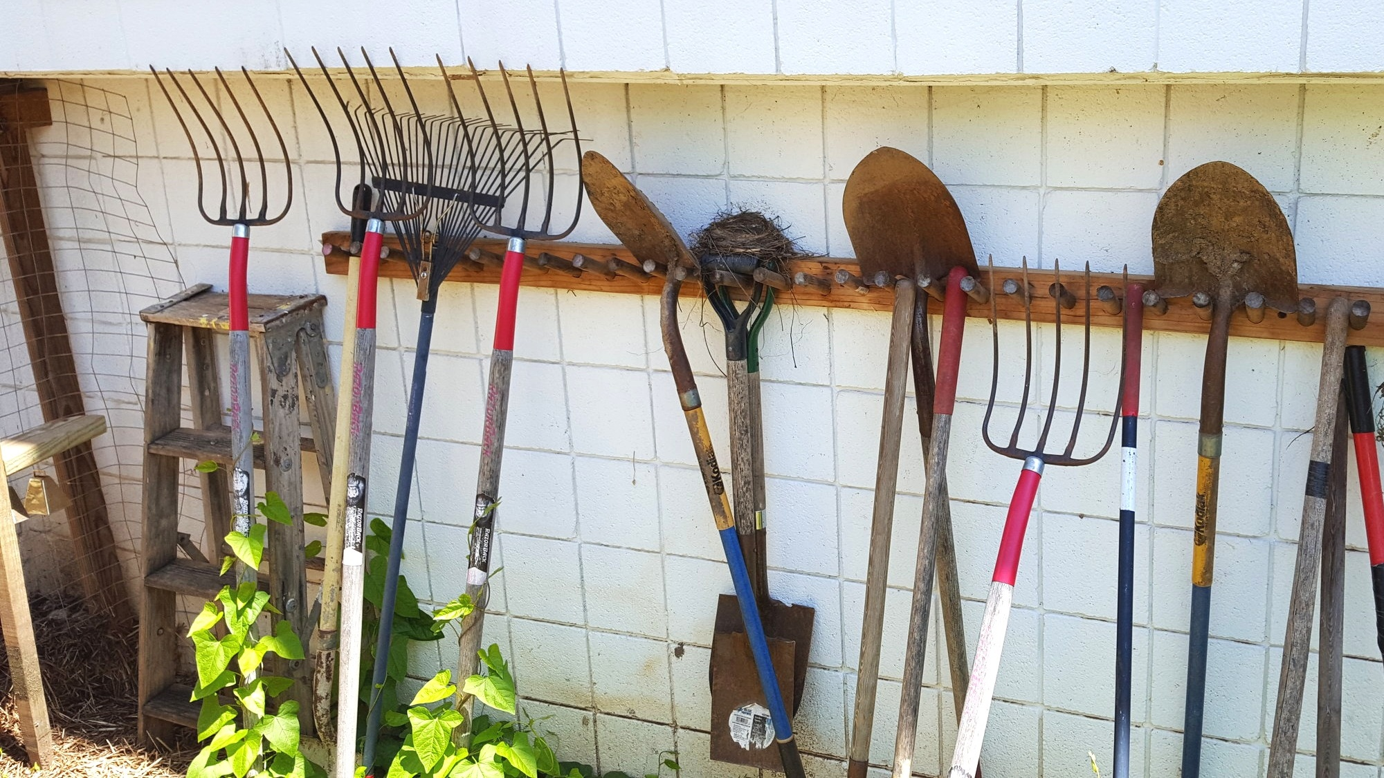 All gardens start with a set of trusty tools!