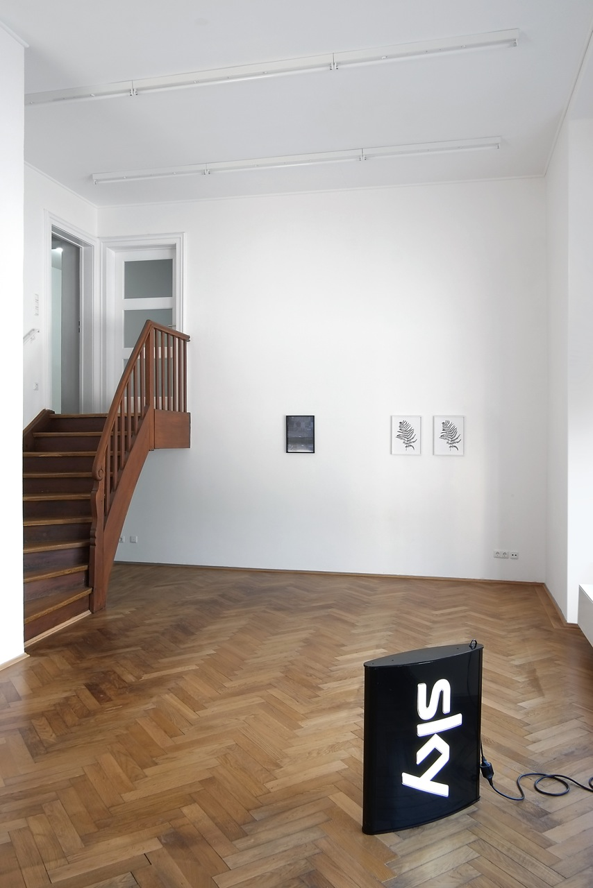 Alex Grein ∩ Anna Vogel, installation view