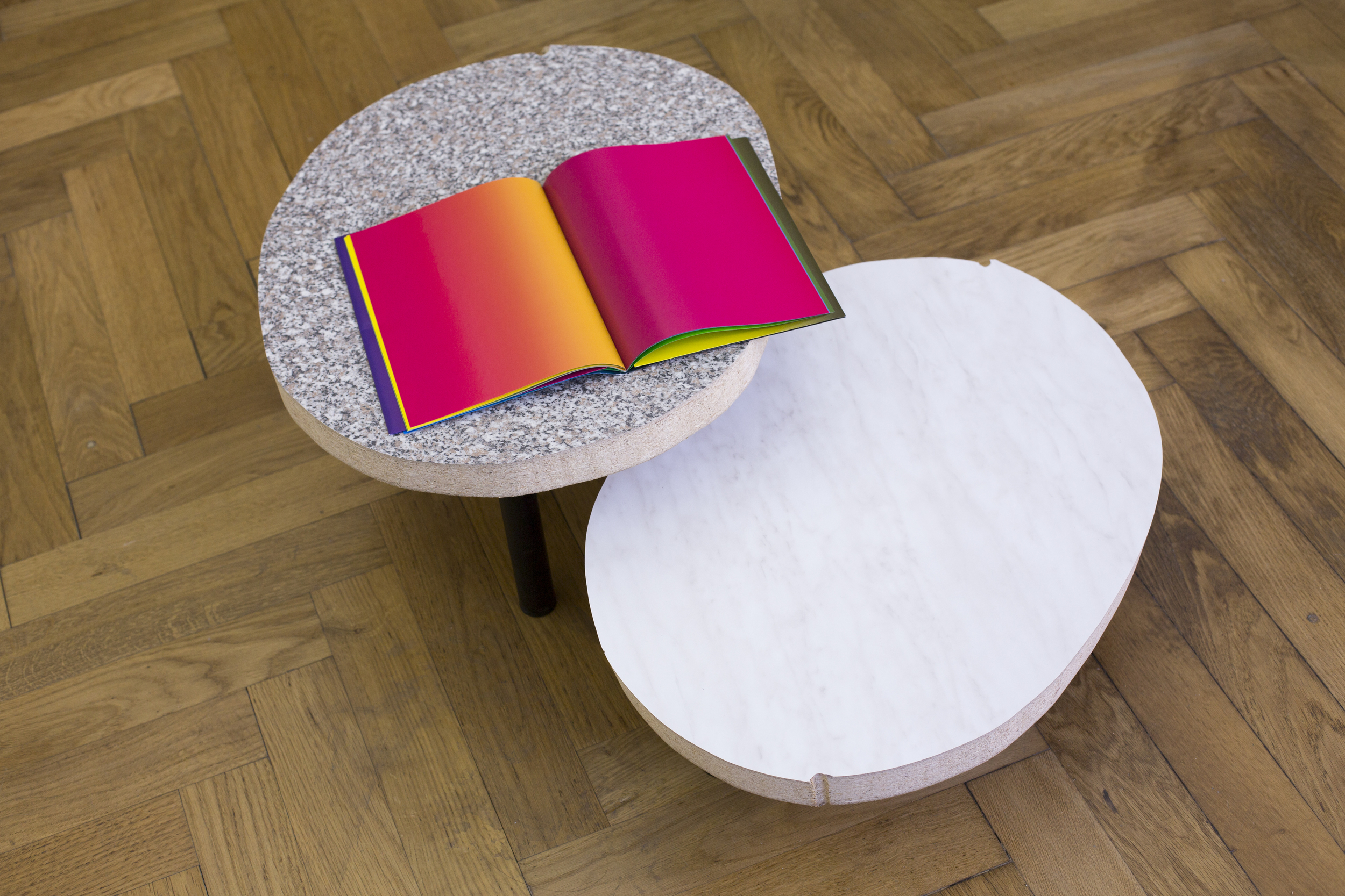 Elvire Bonduelle - waiting room #4 - installation view (Olaf Nicolai, Elvire Bonduelle)