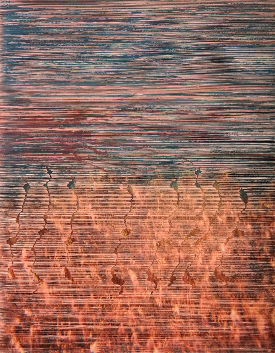 Anna Vogel, Yet Untitled, 2017, ink on pigment print, 31 x 24 cm