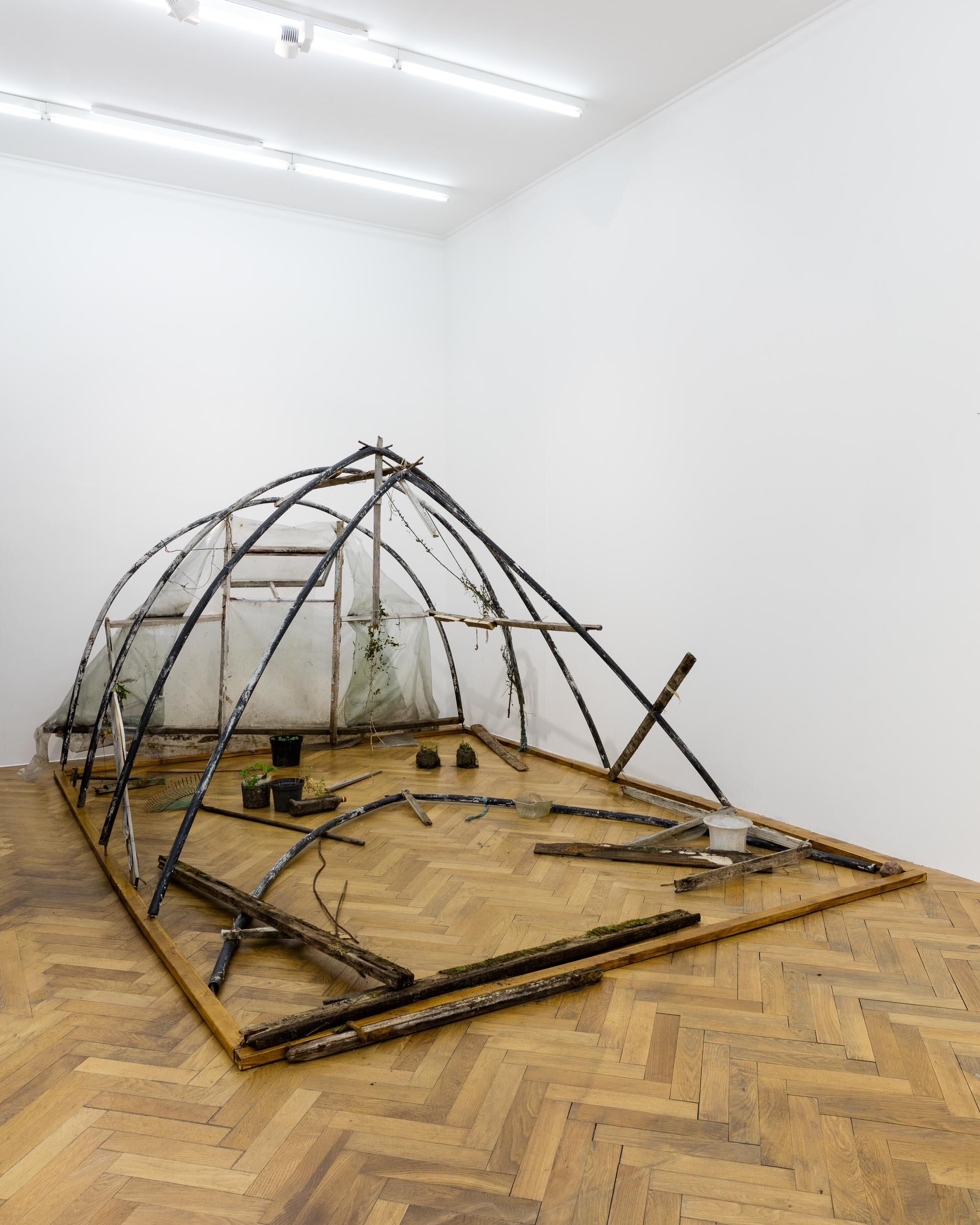 Augustas Serapinas, Greenhouse from Užupis, 2019, found glass house structure, found  plants and objects,  400 x 210 x 300 cm, dimensions variable