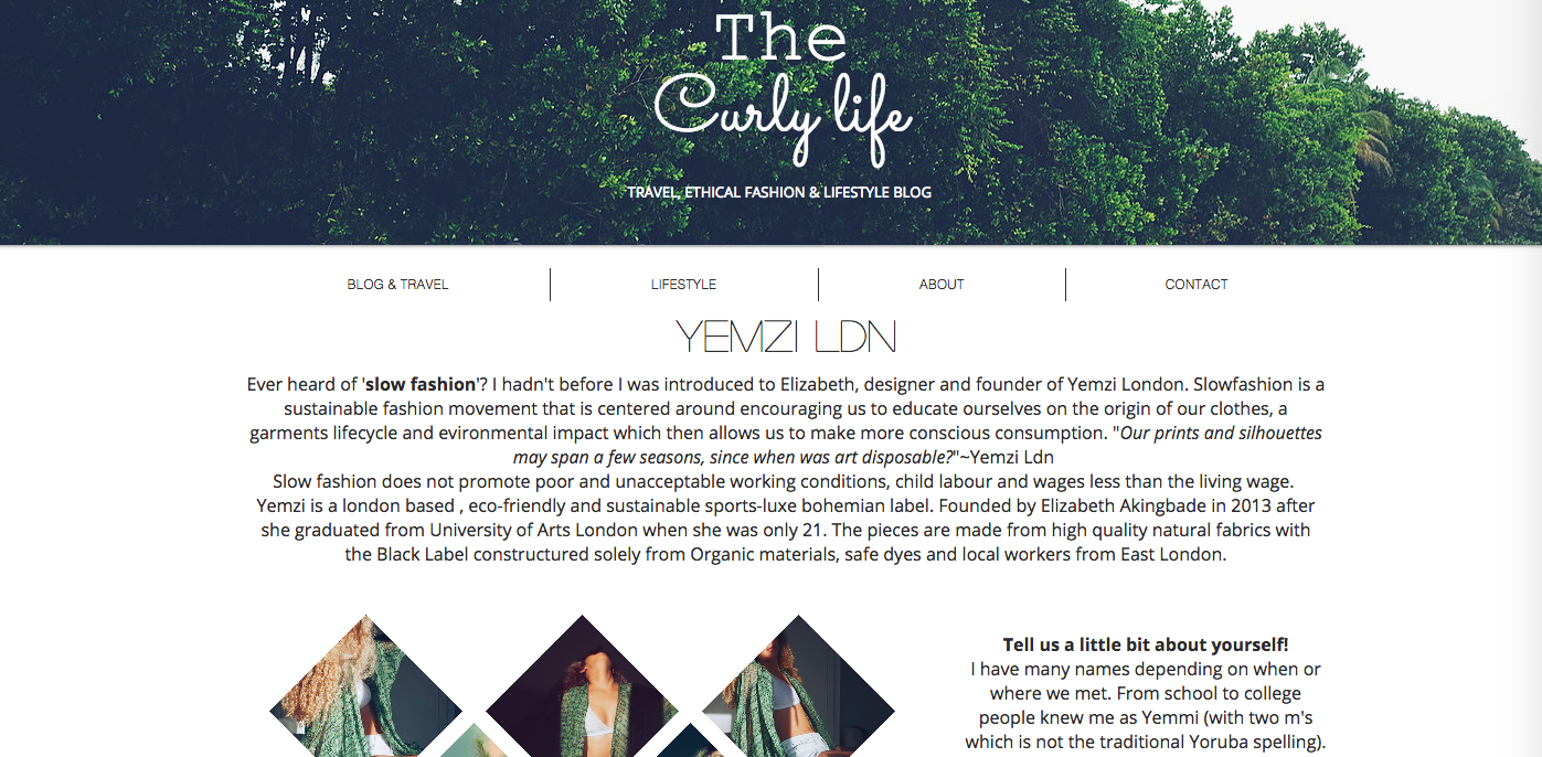 The Curly Life Blog