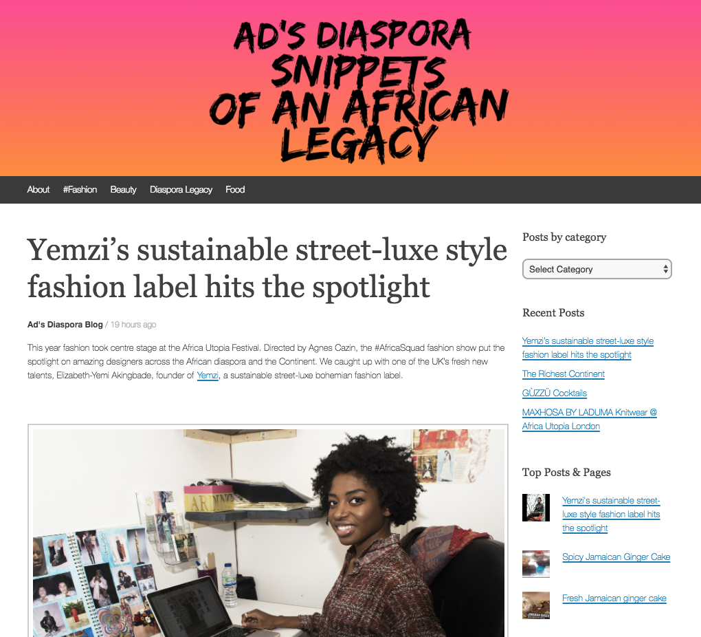 yemzi interview ads diaspora blog