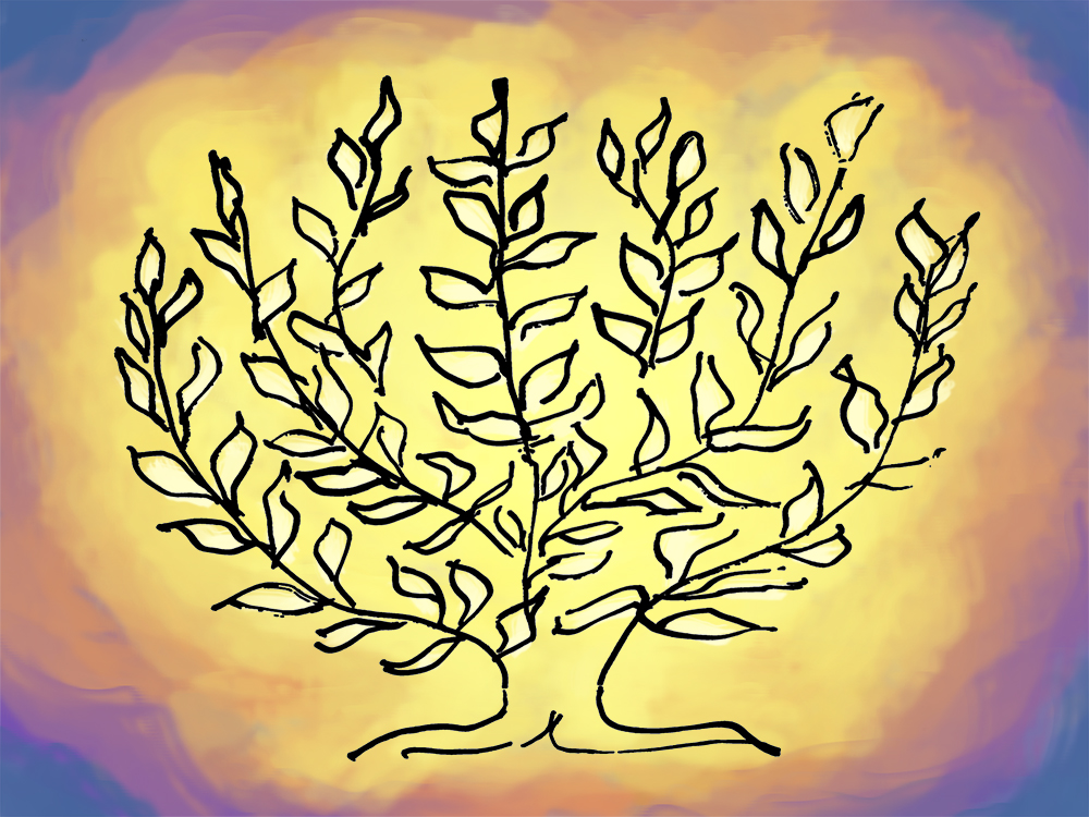Tree of Life #1