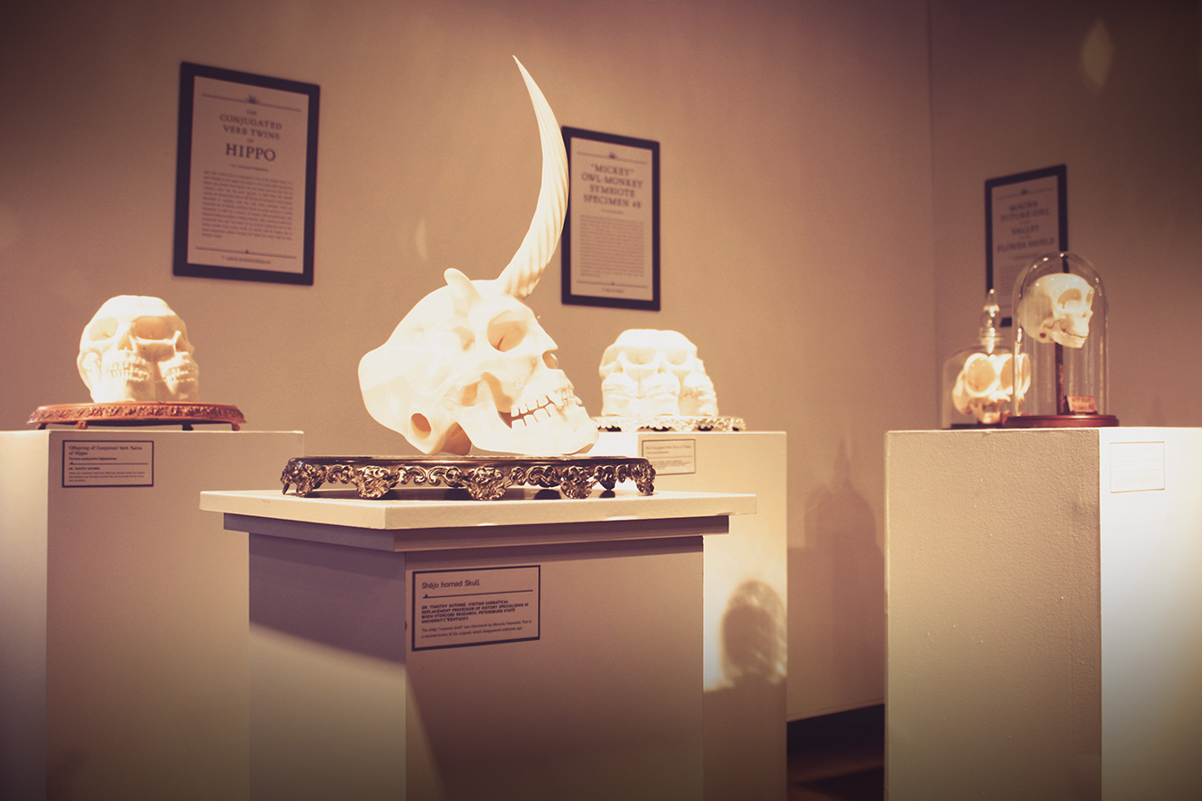 RNG Gallery - 2013