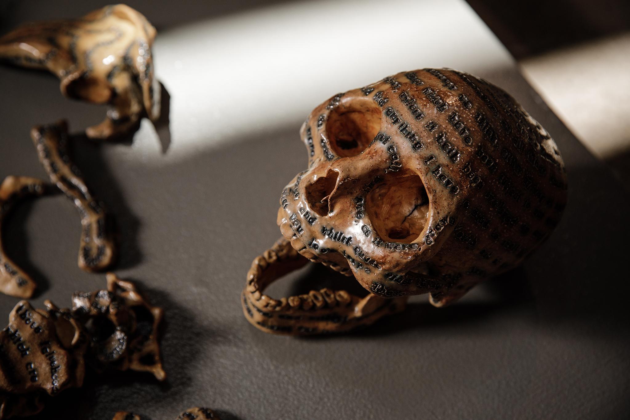 jkdc_moahkaneko-skull.jpg