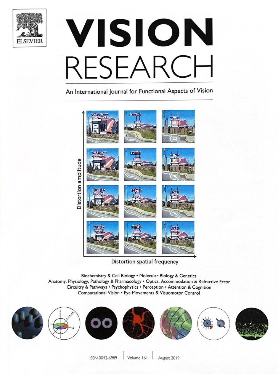 Cover: Jennings et al. (2019), Vision Research, 161, 12-17