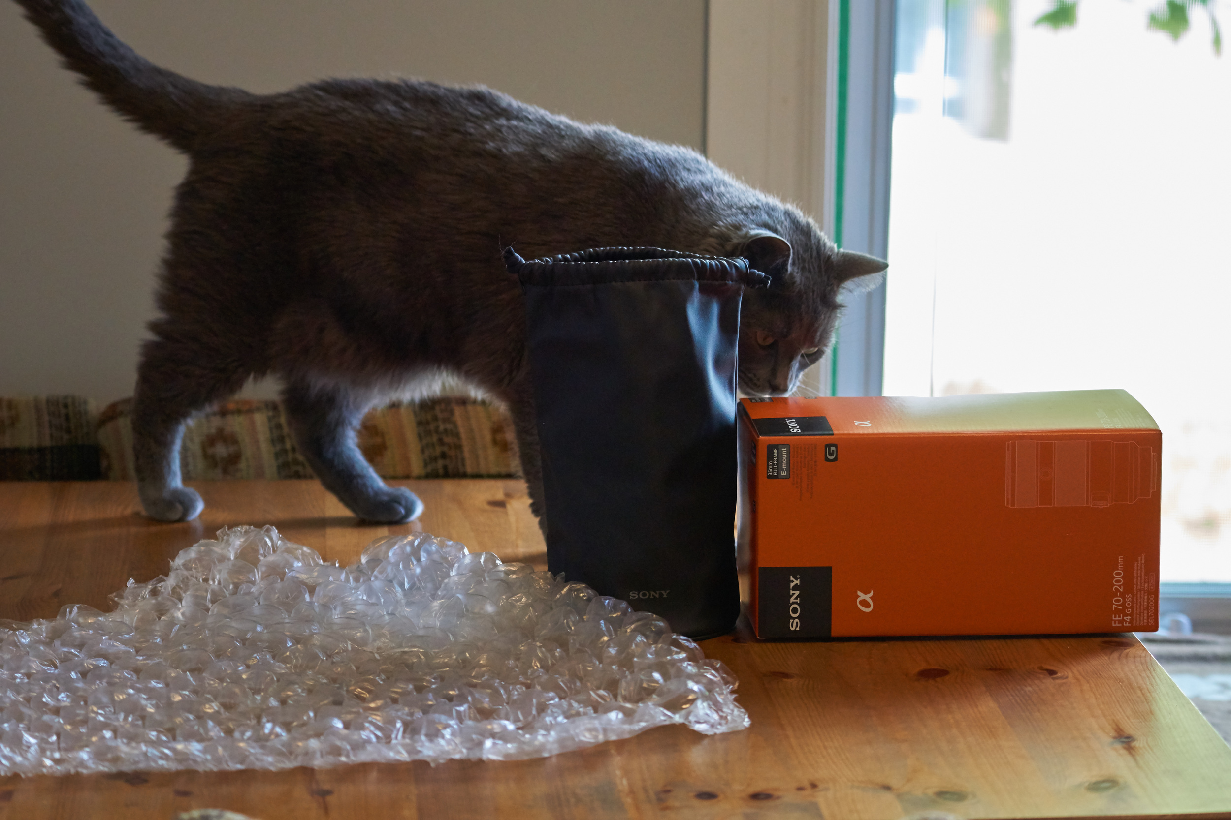 The only thing better than an unboxing is a cat unboxing.