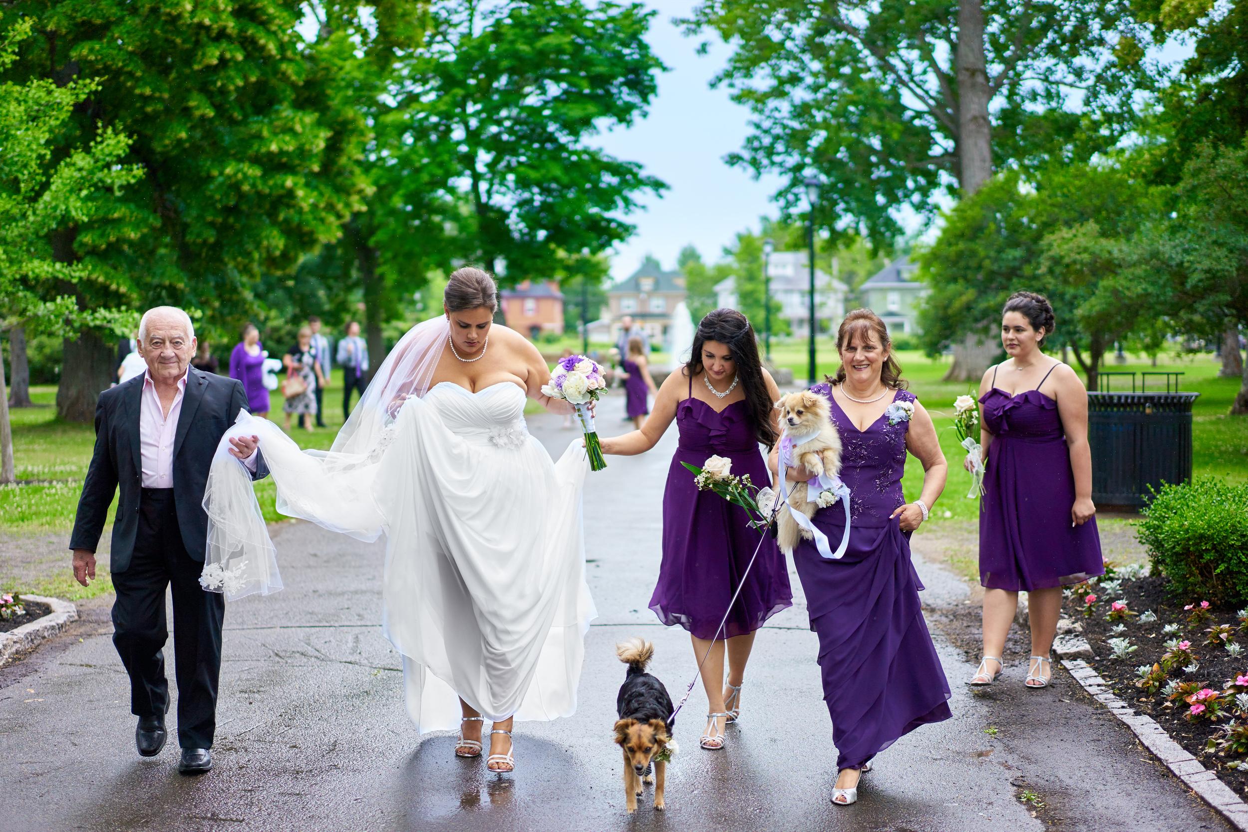 Christine & Chris' Wedding 239.jpg