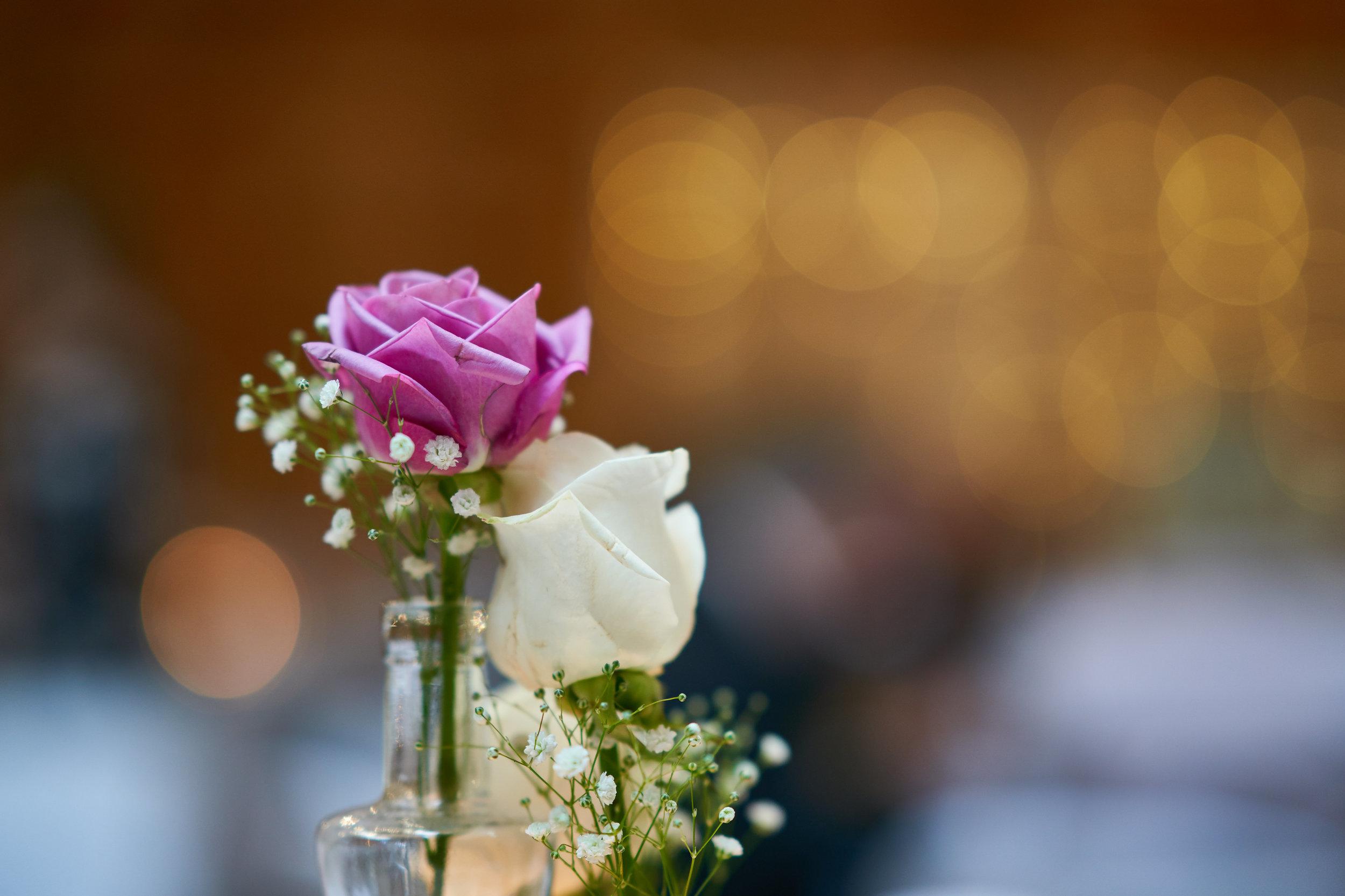 Marcia & Johannes' Wedding - 523.jpg