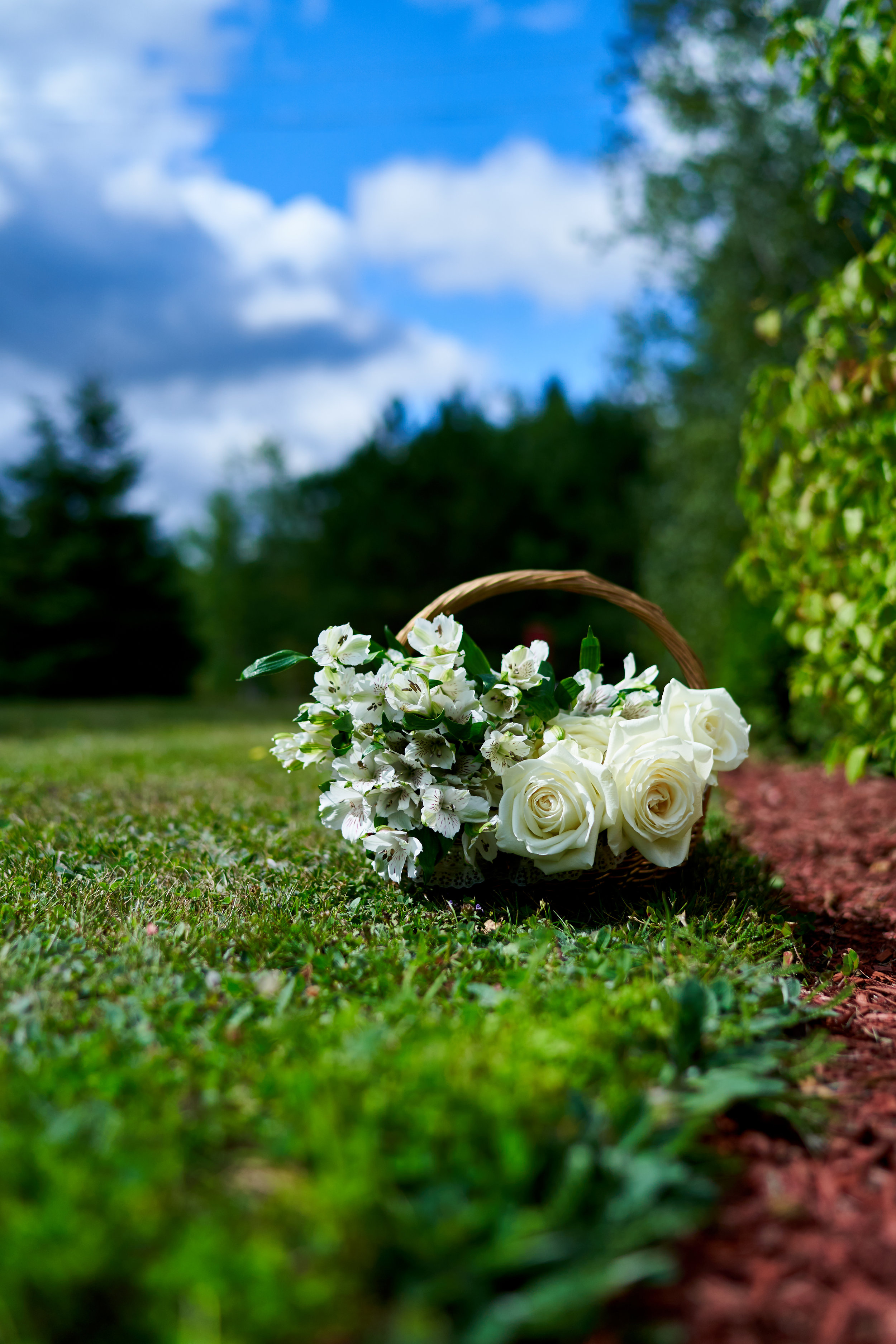Maeghan & Phil's Wedding 081.jpg