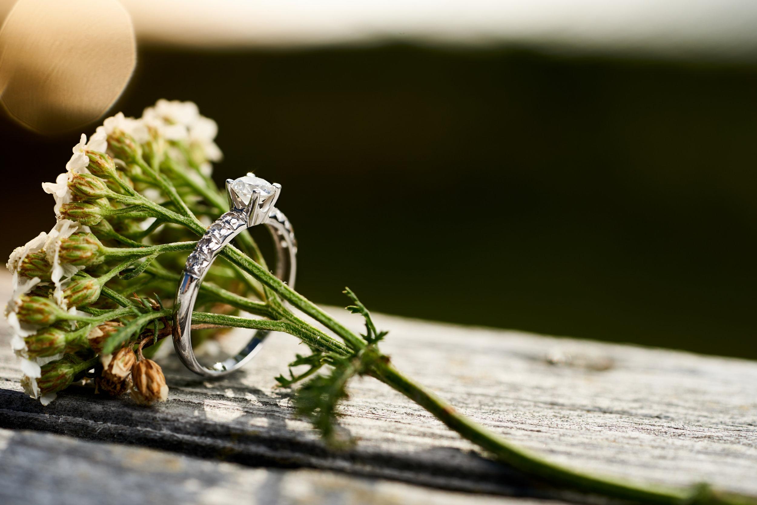 Abbie & Dan's Engagement - 165.jpg