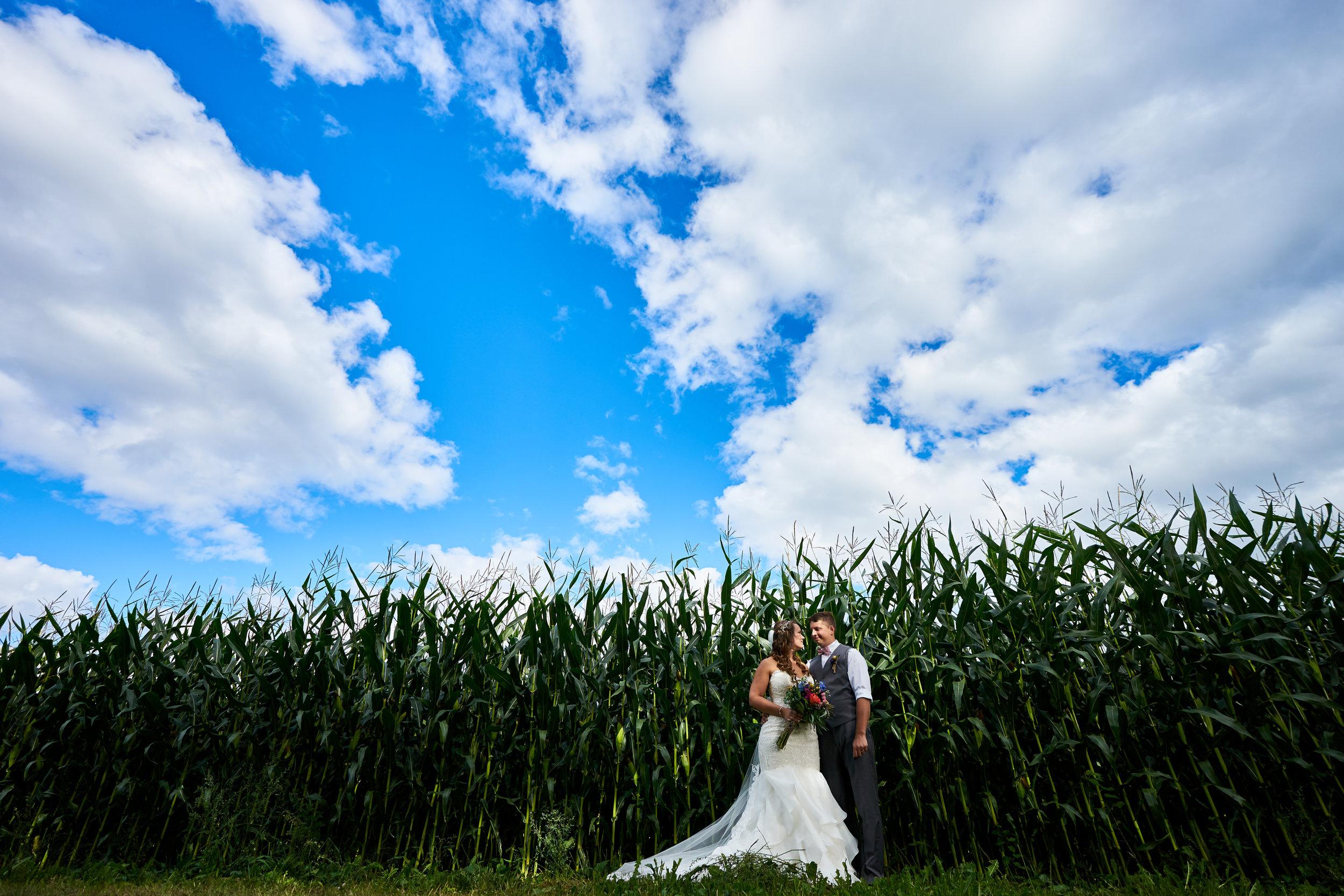 Rianne & Scott's Wedding - 354.jpg