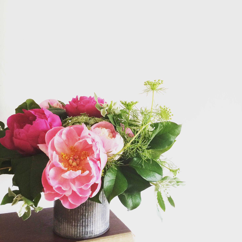Photo May 24, 12 22 55 PM.jpg