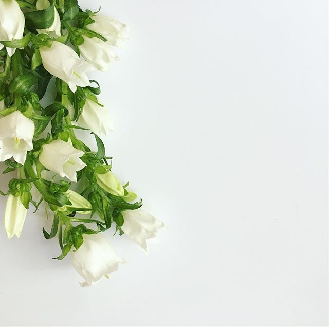 Thursday vibes. . . . #flowers #floralinspo #itsalmostfriday #floraldesign #floralarrangement #floraldecor #flowerpower #laflorist #imaflorist