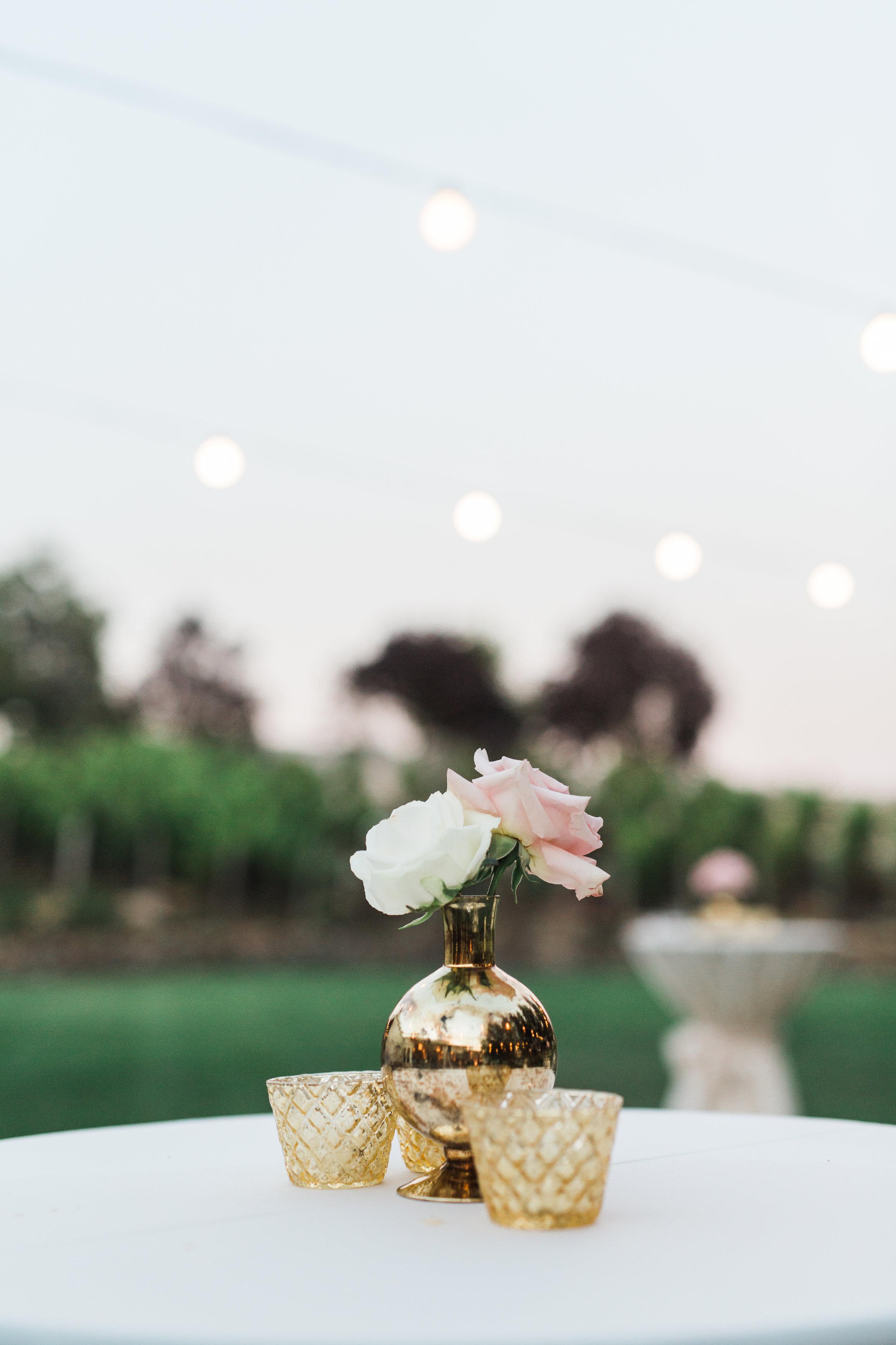 jenny-and-george-wedding-roque-events-meyerott-photography 1146.jpg