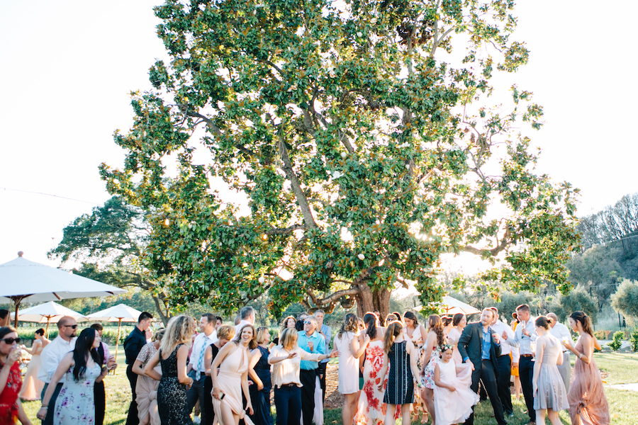ROQUE Events - Amber and Vince - Courtney Lindberg Photography - Napa Valley Wedding55.JPG