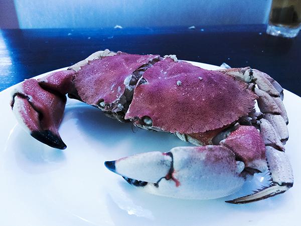 crab_1_web.jpg