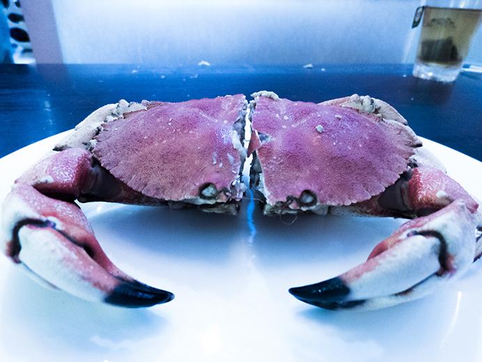 crab_2_web.jpg