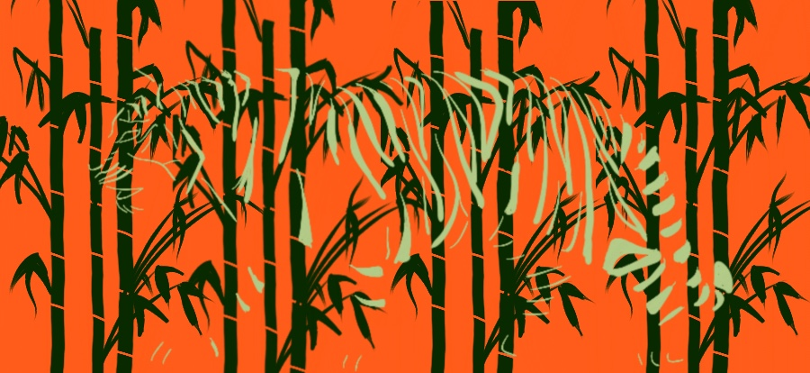 Sketch 3: A hidden tiger in the bamboo forests?