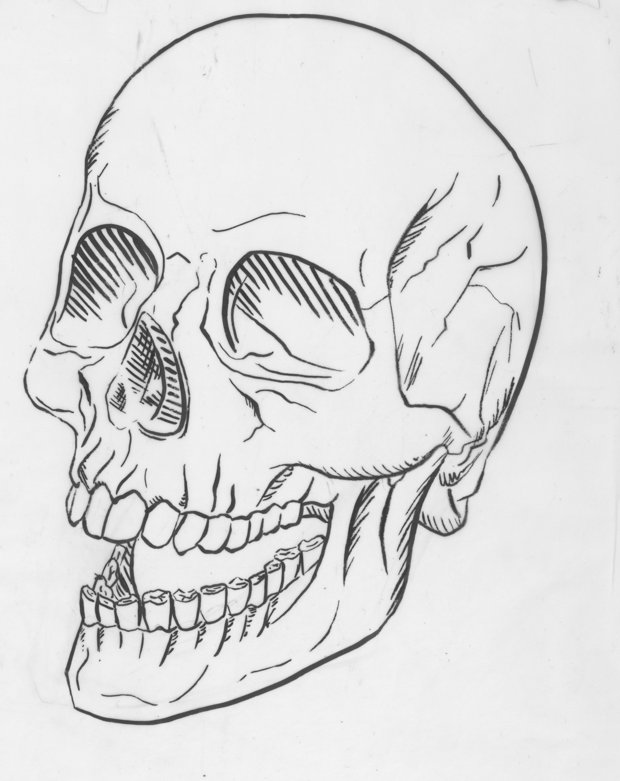 SkullScan.jpeg