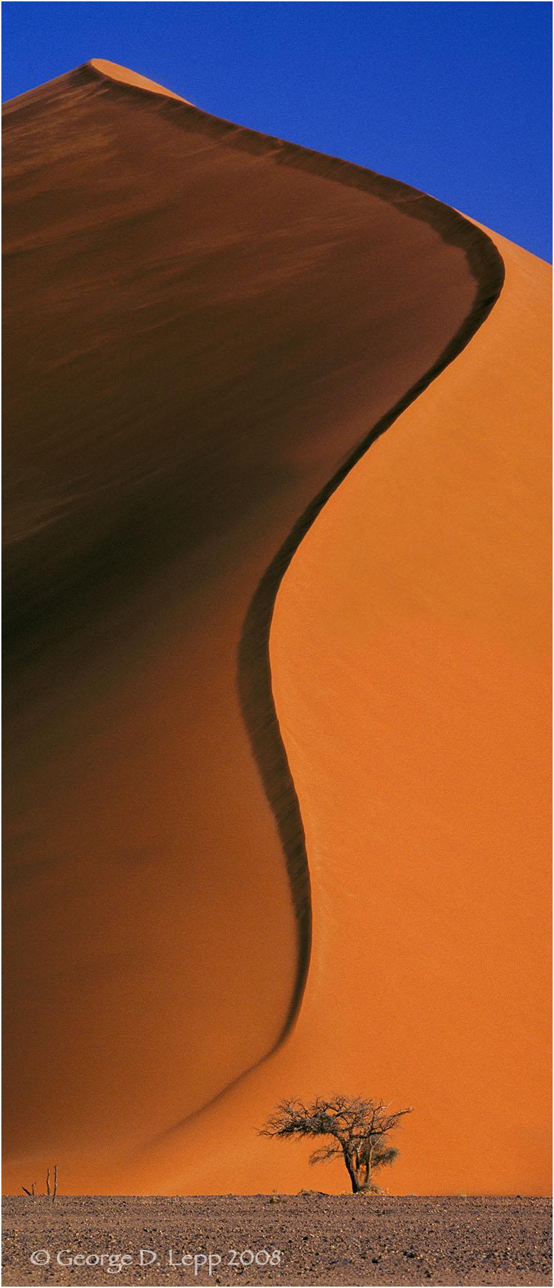 Giant sand dune in Namibia. © George D. Lepp 2008 LA-AF-NA-0016