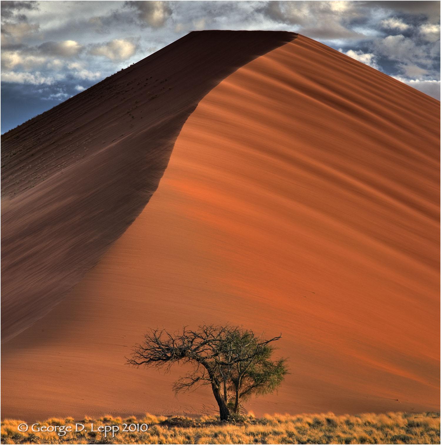 Same sand dune years later, Namibia. © George D. Lepp 2010 LA-AF-NA-0029