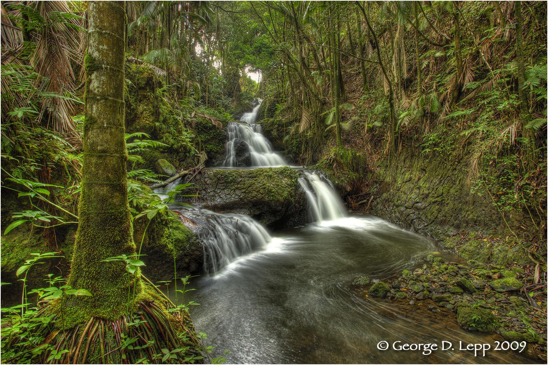 Waterfalls, Big Island, Hawaii.     © George D. Lepp 2009 L-HA-HA-0006