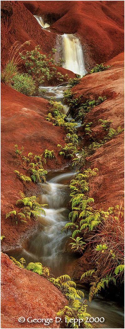 Waterfalls, Kauai, Hawaii.    © George D. Lepp 2000 L-HA-KA-0023