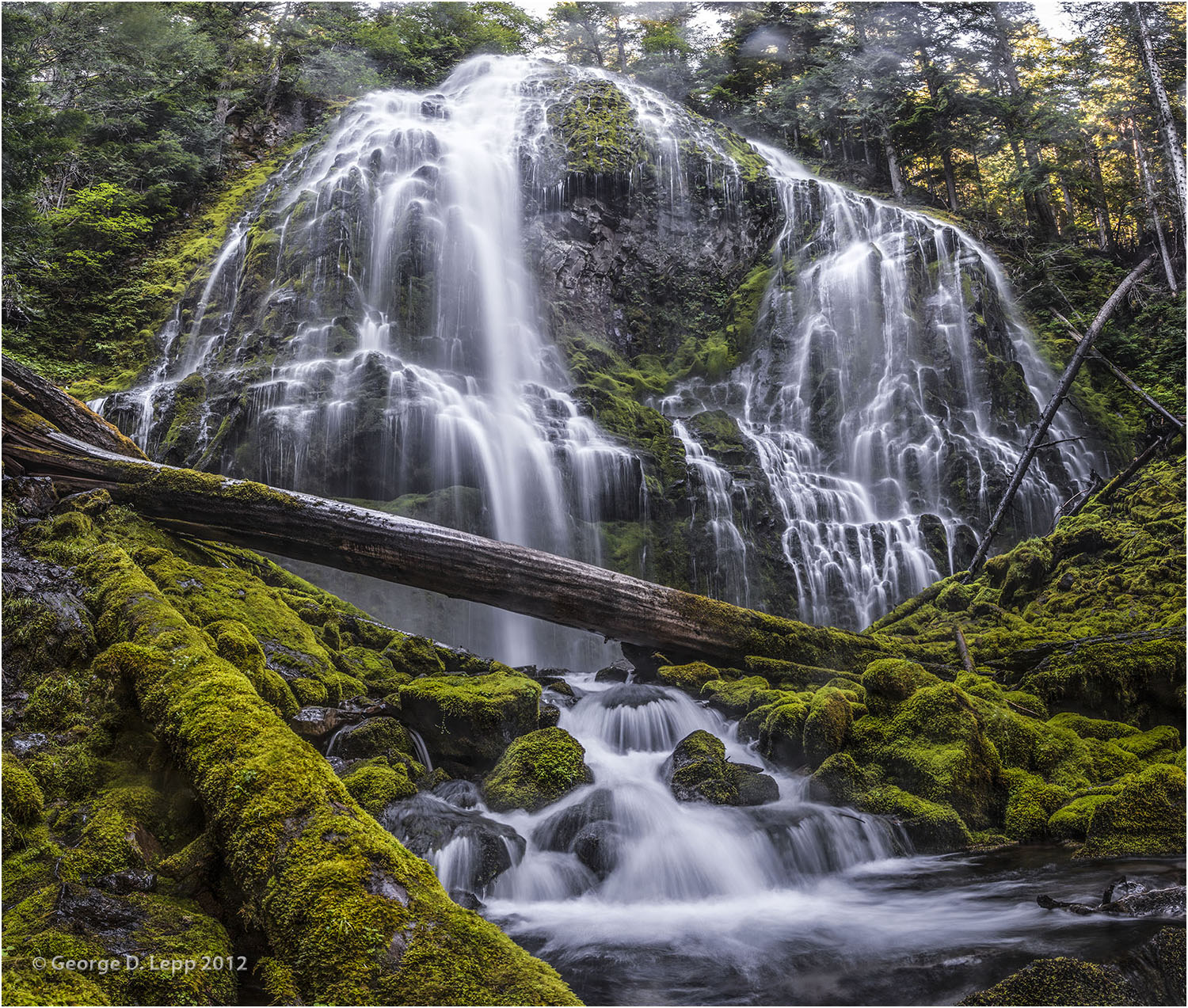 Proxy Falls in the central Cascade mountains. © George D. Lepp 2013 LO-WF-PR-0001