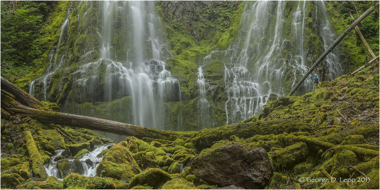 Lower Proxy Falls, Cascades, Oregon. © George D.Lepp 2013 LO-WF-PR-0017