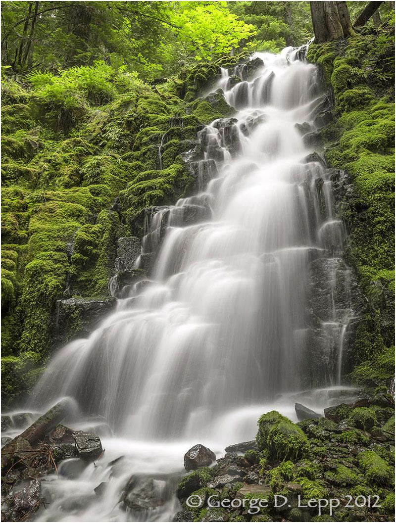 White Branch Falls, Cascades, Oregon. © George D. Lepp 2012 LO-WF-WB-1001