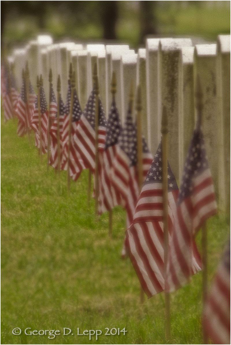 Arlington National Cemetery, D.C. © George D. Lepp 2014 L-DC-0002